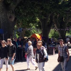 Le dimanche 2 juillet 2017 : Taulignan fête le lavandin